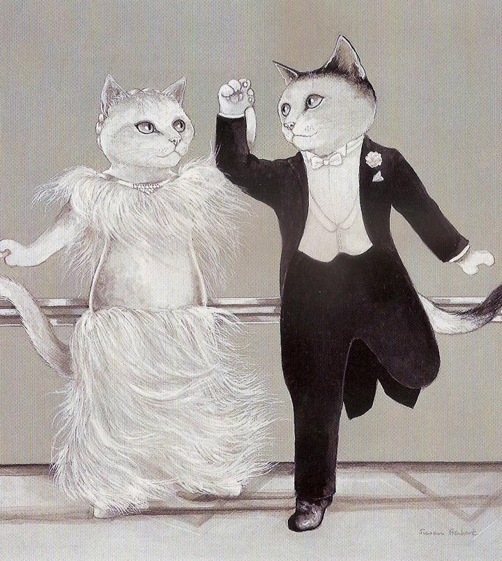 film kedileri 16