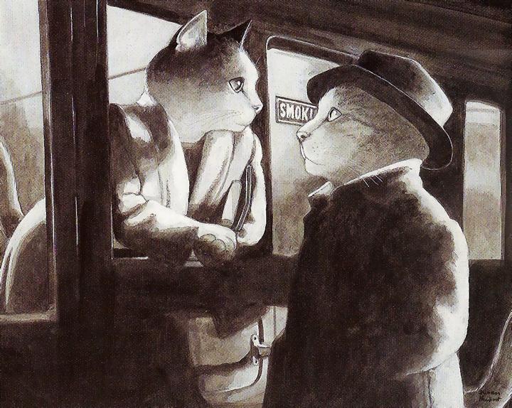 film kedileri 24