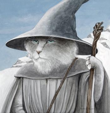 kitap kedileri 3